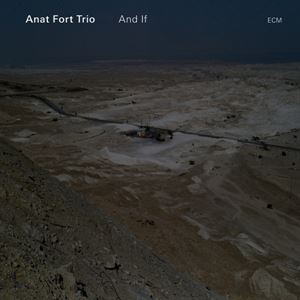 Picture of Anat Fort Trio - And If
