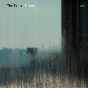 Picture of Tim Berne - Snakeoil