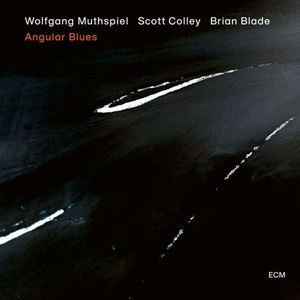 Изображение Wolfgang Muthspiel, Scott Colley, Brian Blade ‎– Angular Blues
