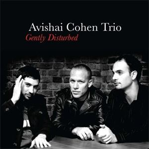 Изображение  Avishai Cohen Trio – Gently Disturbed
