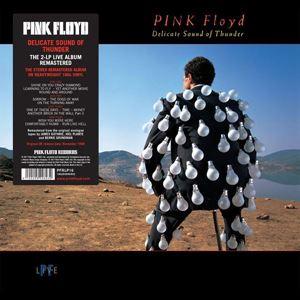 Изображение Pink Floyd – Delicate Sound Of Thunder
