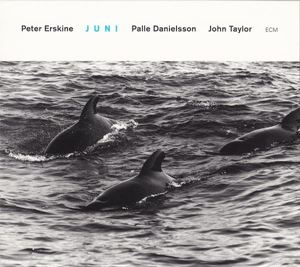 Изображение Peter Erskine, Palle Danielsson, John Taylor – Juni