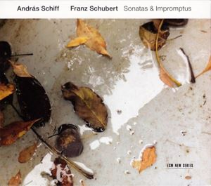 Изображение András Schiff, Franz Schubert – Sonatas & Impromptus