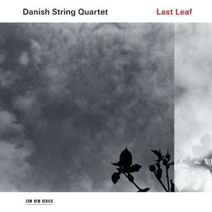 Изображение Danish String Quartet ‎– Last Leaf